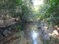 西河原公園1