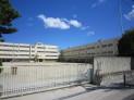 茨木小学校2
